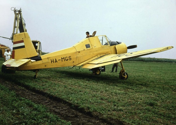 HA-MGS(1)-2