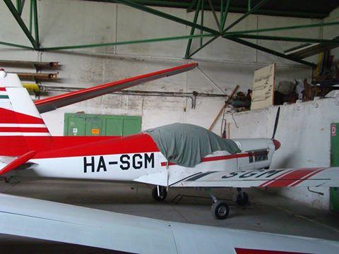 HA-SGM-1